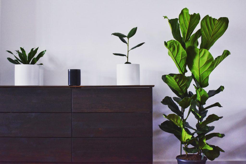 how much weight can an ikea dresser hold