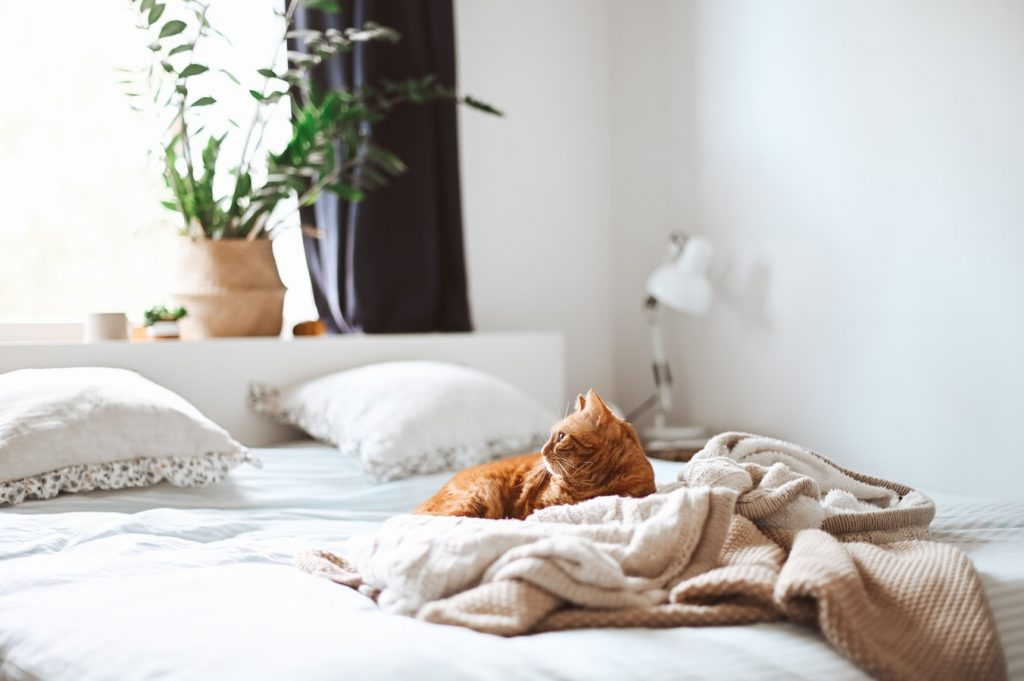 how to arrange a small bedroom with a full bed