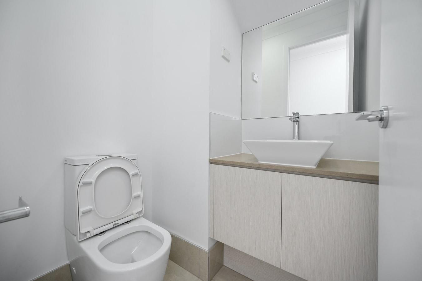 wd40 toilet